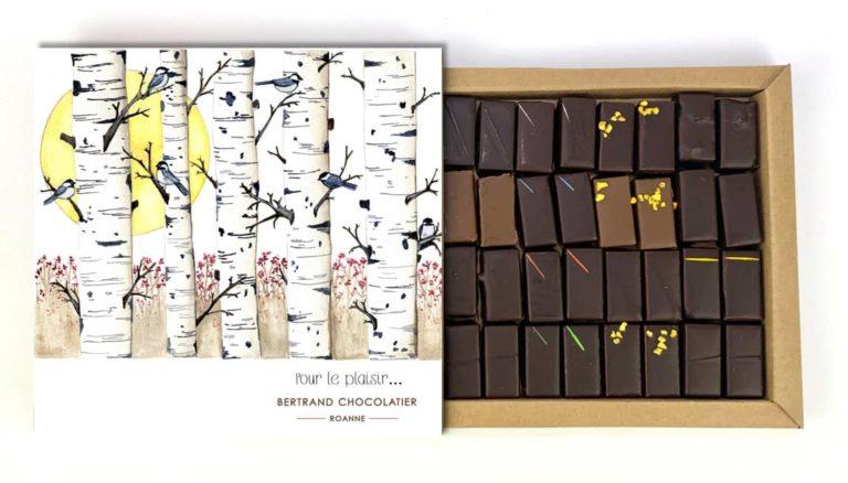 Coffret 32 chocolats classiques pour le plaisir